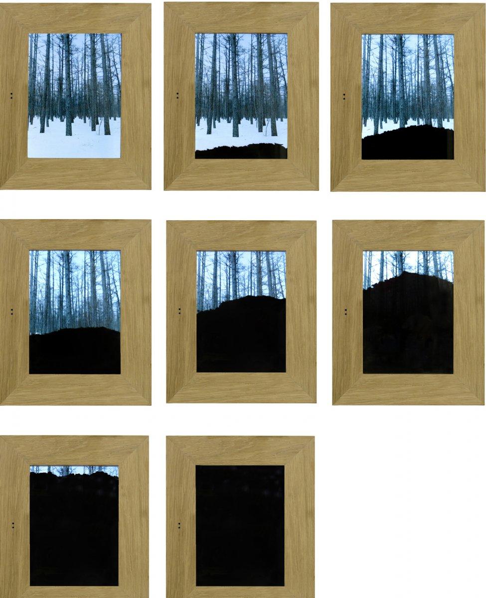 A árvore quando morre, devolve á terra o que esta lhe emprestou - [:pt]Inês Norton[:]